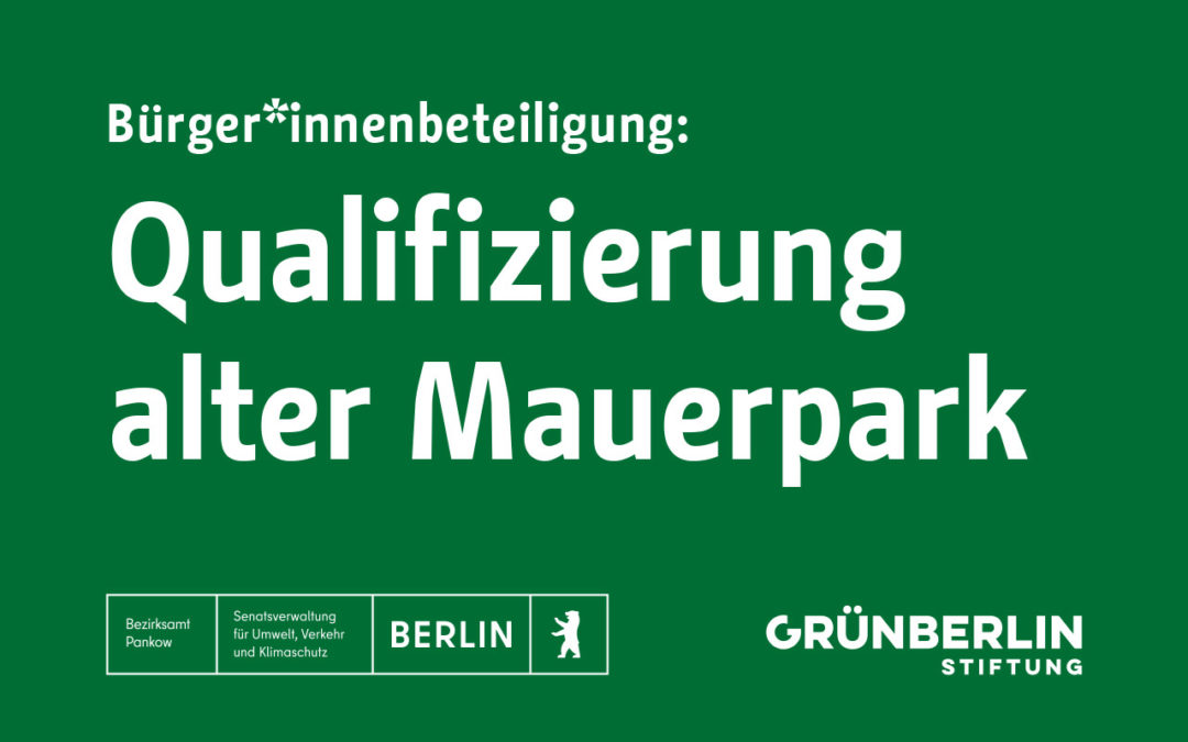 Mauerpark Qualifizierung: Digitaler Workshop A